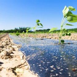 پلاستیک ویژه کنترل آفات خاک
